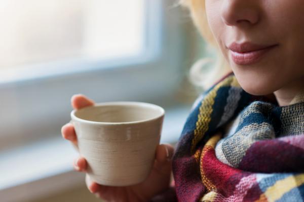 Para qué sirve el té de jengibre y canela y cómo hacerlo - Té de canela y jengibre para la circulación sanguínea