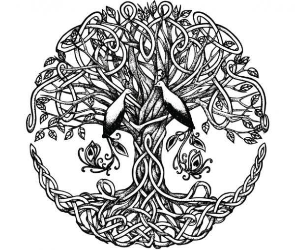 Árbol de la vida: significado, qué es y origen - CON FOTOS - El significado del árbol de la vida y sus interpretaciones