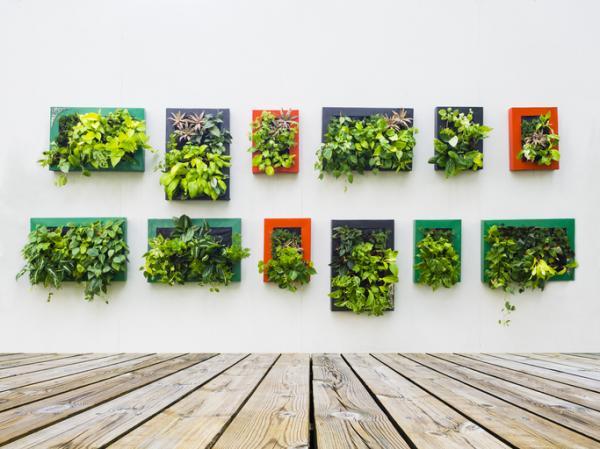 Cómo hacer un jardín vertical artificial - Cómo hacer un jardín vertical interior con plantas artificiales