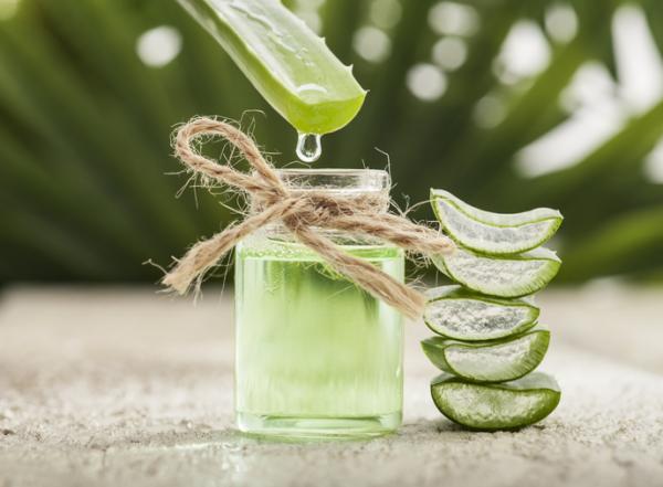 Remedios caseros para las aftas - Gel de aloe vera para llagas en la boca