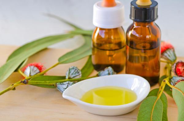 Aceites esenciales para el cabello graso - Aceite esencial de eucalipto para eliminar la grasa del pelo