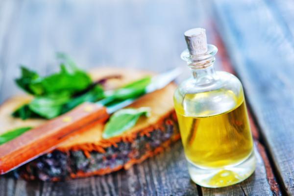 Aceite de menta para el cabello: beneficios y cómo aplicarlo - Beneficios del aceite de menta para el cabello