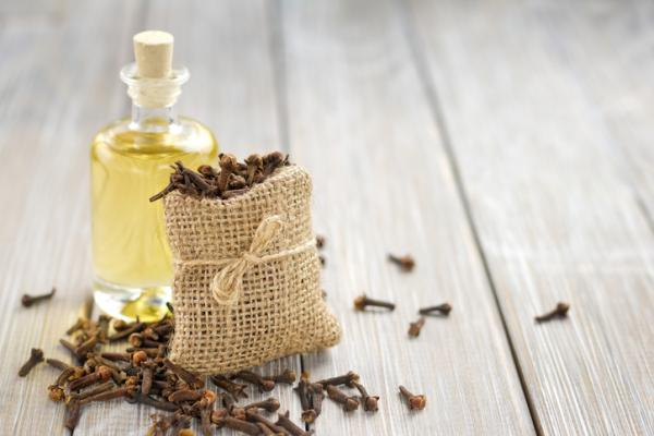 Cómo utilizar el clavo de olor para las chinches - Cómo utilizar el clavo de olor para prevenir las chinches