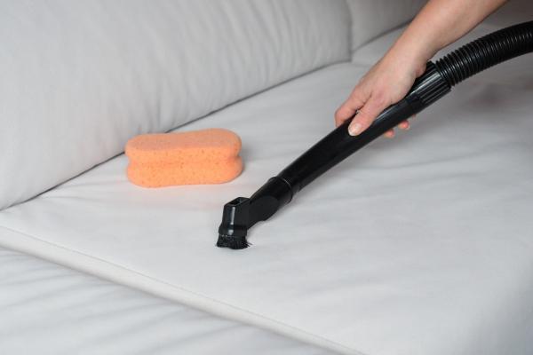 Cómo eliminar las chinches rápidamente - Cómo eliminar las chinches rápidamente