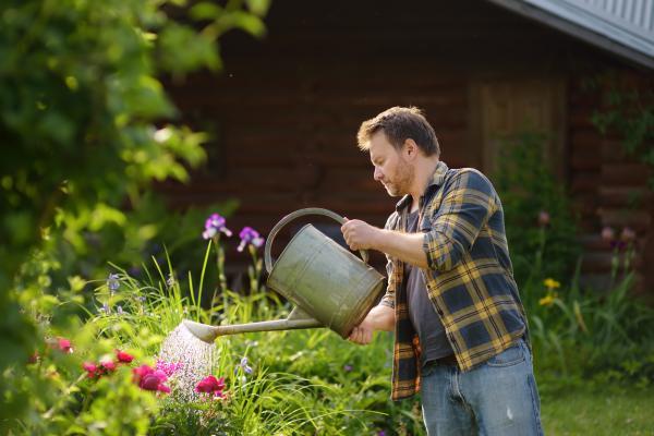 Cómo plantar peonías - guía paso a paso - Cómo cuidar peonías