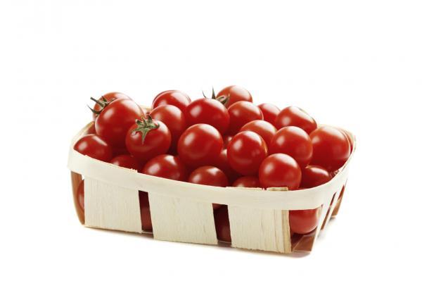 Cómo plantar y cultivar tomates cherry - Cuáles son las propiedades del tomate cherry