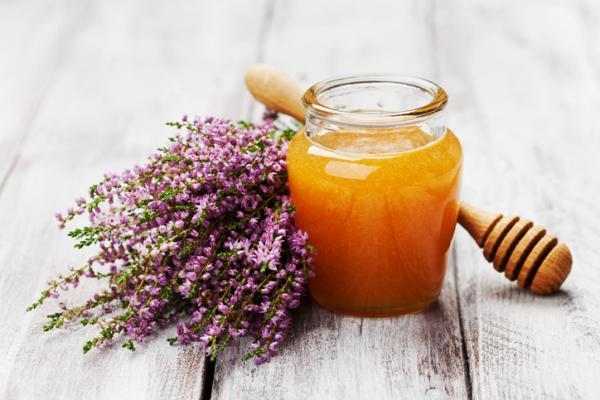 Cómo hacen la miel las abejas - Tipos de miel de abeja
