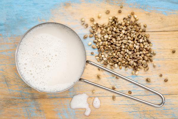 Leche de alpiste: propiedades, beneficios y cómo hacerla - Cosas importantes a tener en cuenta sobre la leche de alpiste