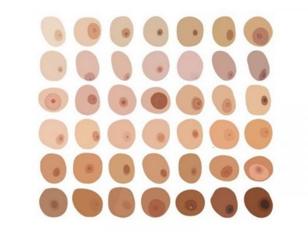 9 tipos de pezones - Colores de pezón
