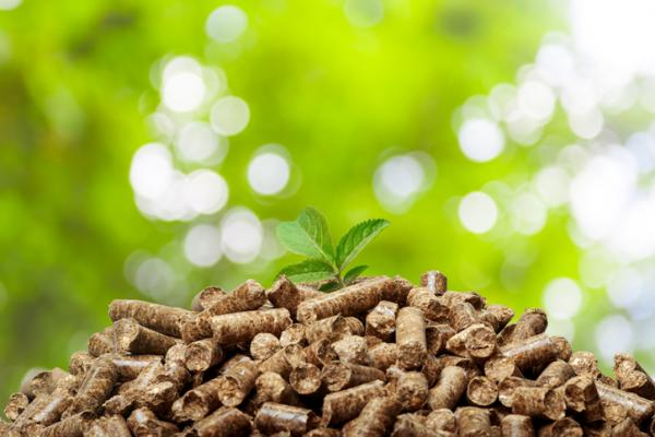 Qué son los abonos orgánicos y tipos - Abono orgánico en pellets