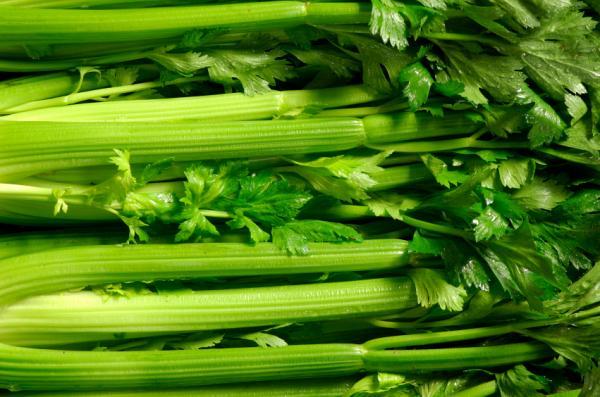 13 tallos comestibles - Los tallos comestibles más usados en la cocina