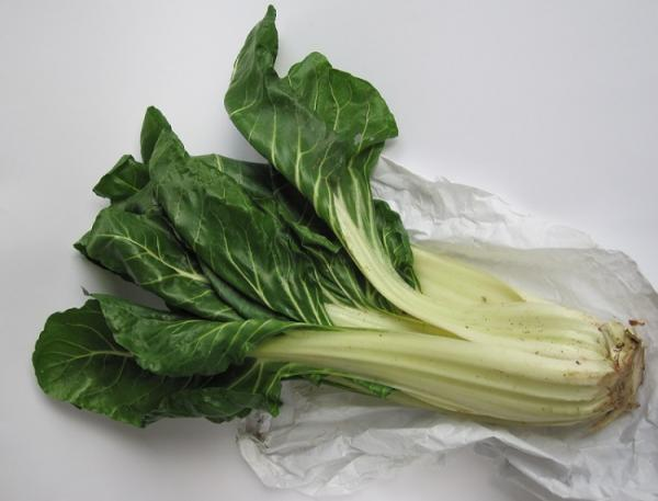 13 tallos comestibles - 13 tallos comestibles - lista de nombres y características