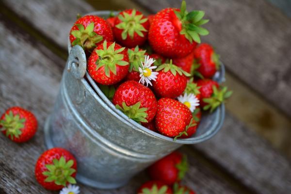 Alimentos para aumentar el busto - Frutas para aumentar el tamaño de los pechos