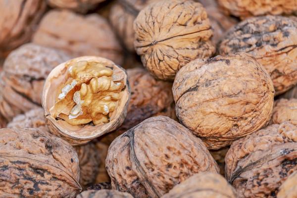 Alimentos para aumentar el busto - Alimentos ricos en proteínas