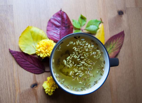 18 plantas medicinales para la diarrea - Hinojo