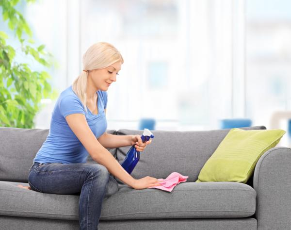 Cuánto tiempo dura el parvovirus en una casa - Cuánto tiempo dura el parvovirus en el ambiente y cómo eliminarlo