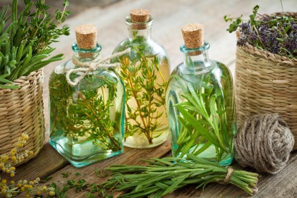 Para qué sirve el aceite de romero - Para qué sirve el aceite de romero - propiedades, beneficios y usos