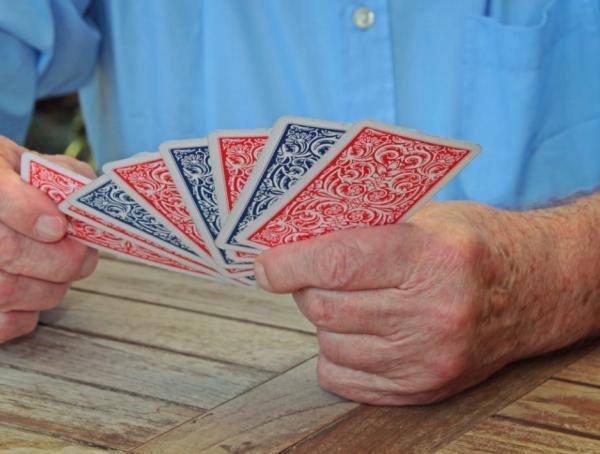 Juegos de cartas españolas fáciles - La brisca
