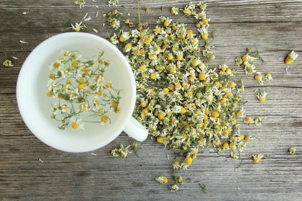 Cómo usar el té de manzanilla para el acné - remedio muy efectivo - Composición nutricional de la manzanilla