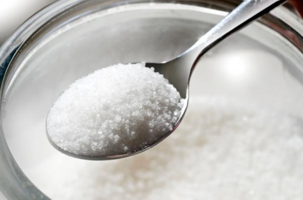 Cómo eliminar las hormigas voladoras en casa - Eliminar una plaga de hormigas voladoras con azúcar y bórax