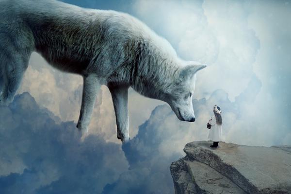 Qué significa el lobo como animal de poder - Animal de poder lobo blanco