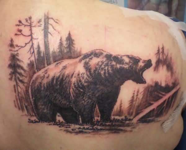 Cuál es el significado de los tatuajes de osos - Significado de tatuajes de osos grizzly y negros