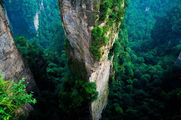 Las montañas de Tianzi en China son 'Pandora' de la película 'Avatar' - Misteriosa y sobrecogedora vegetación en las montañas de Tianzi