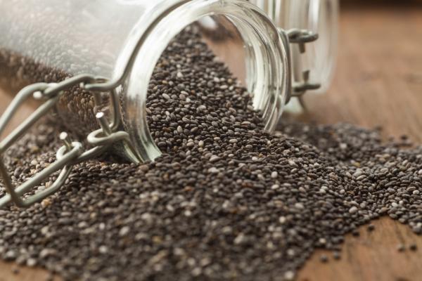 Beneficios de las semillas de chía para el cabello - Mascarilla casera de semillas de chía para el crecimiento del cabello