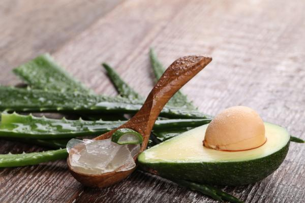 Cremas caseras para las varices y arañitas - ¡remedios caseros efectivos! - Crema casera de aloe vera y aguacate para varices