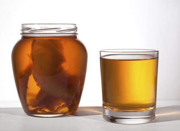 Propiedades curativas del té de kombucha - cómo se prepara y contraindicaciones - Cómo preparar té de kombucha