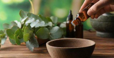 Aceite del árbol de té: para qué sirve, propiedades y contraindicaciones