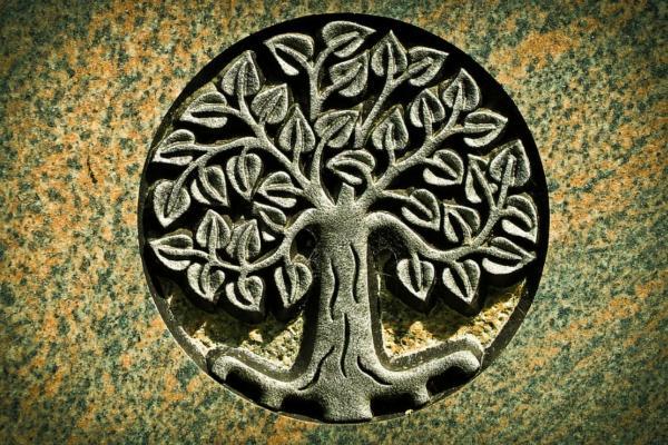 Árbol de la vida: significado, qué es y origen