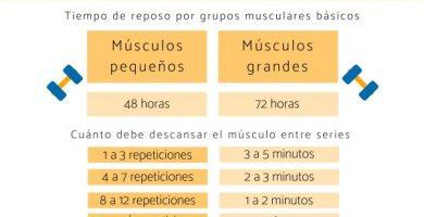 Cuánto tiempo debe descansar cada músculo