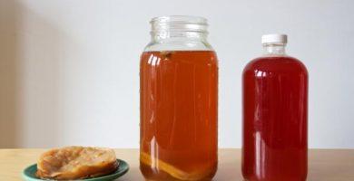 Propiedades curativas del té de kombucha - cómo se prepara y contraindicaciones