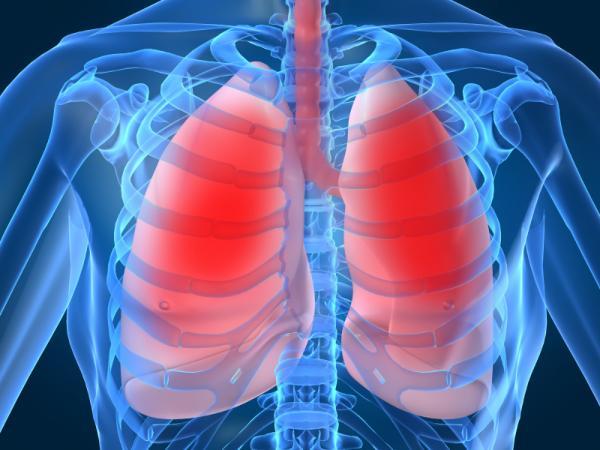 10 síntomas que indican problemas en los pulmones
