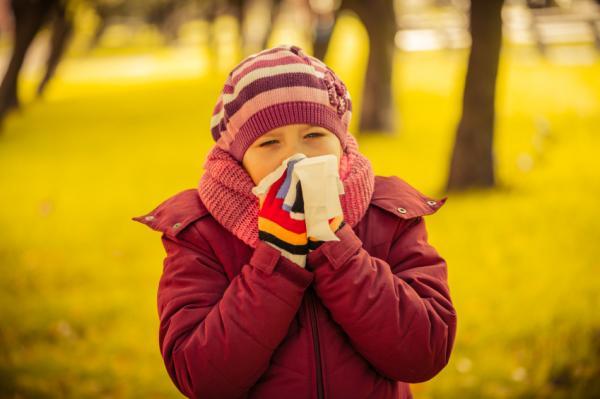 Cómo curar el resfriado con cebolla - Propiedades y beneficios de la cebolla