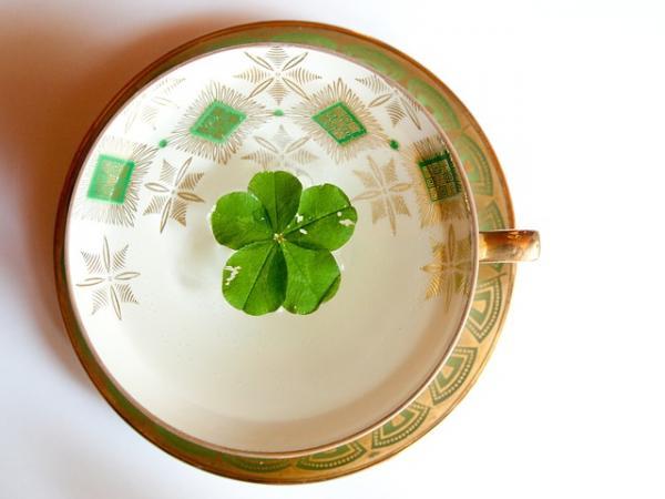 Significado del trébol de cuatro hojas - El trébol de cuatro hojas en diferentes culturas