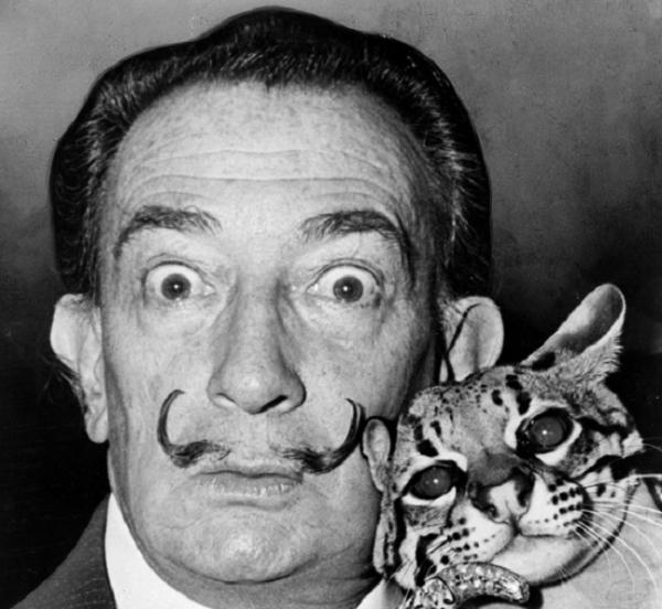 10 tipos de bigote según el rostro - El bigote Dalí
