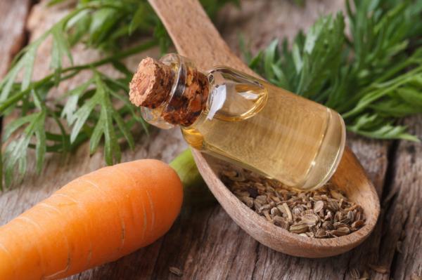 Beneficios de la zanahoria para la piel - Tratamientos de belleza con zanahoria