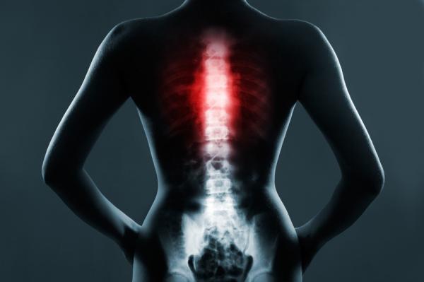 Cuáles son los huesos del tórax - Los huesos de la caja torácica