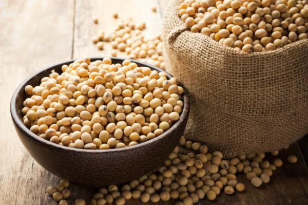Remedios caseros para los sudores nocturnos - Comer soja, vitamina E y hierro