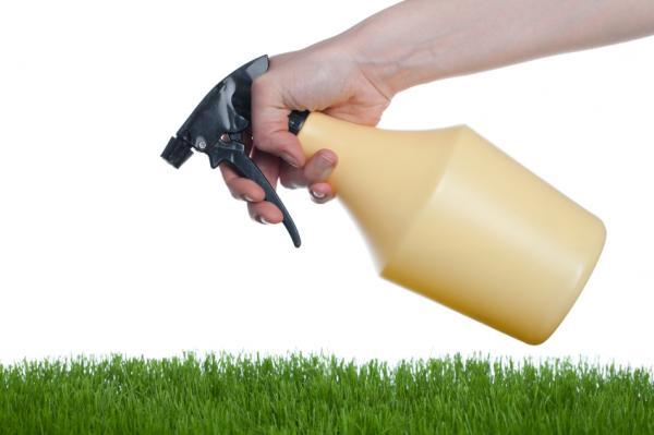 Cómo hacer un insecticida con ortigas - Paso 4