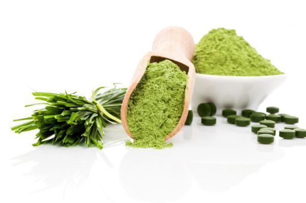 Cuáles son los superalimentos - Alga espirulina