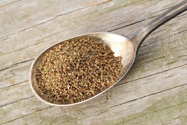 Remedios caseros para el dolor de riñones - Té de semillas