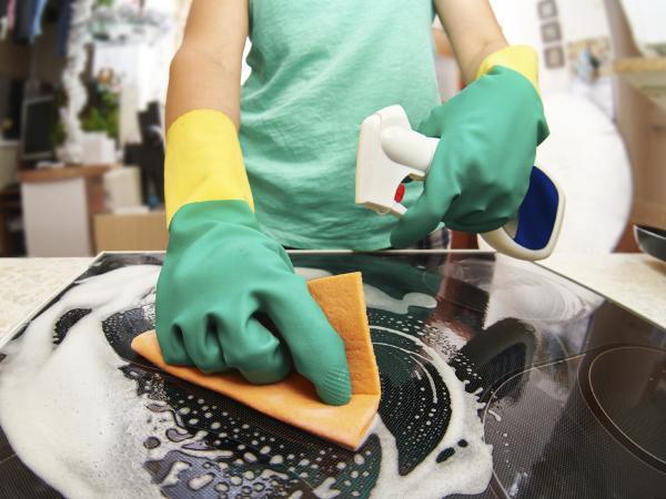 Cómo eliminar las hormigas de mi cocina - Paso 2