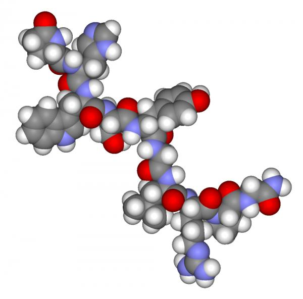 Cuál es la función de las hormonas